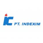 pt indexim coalindo